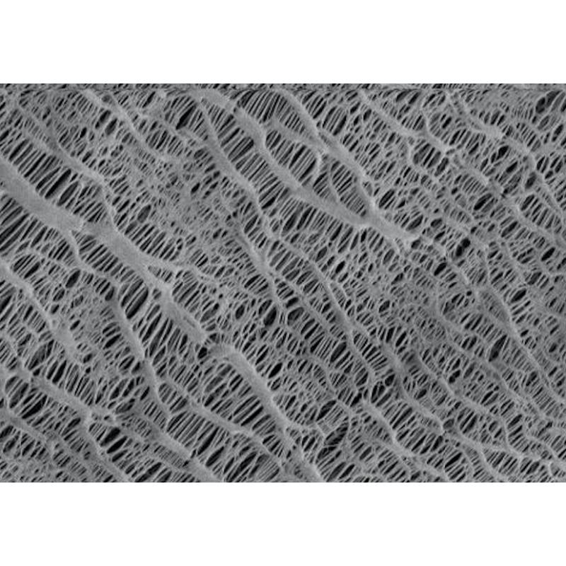 [MF-PP] membrane en polypropylène