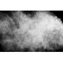 [FS99] Filtre à charbon actif